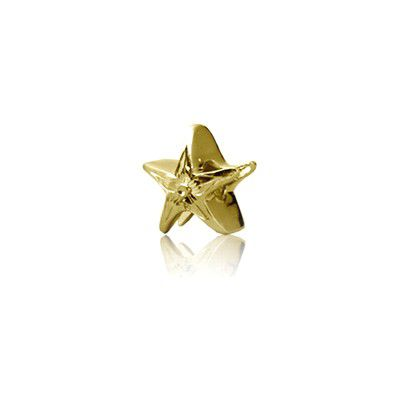 Sterling Silver Hawaiian Yellow Starfish Bead Charm